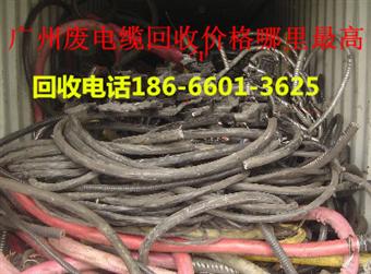 越秀区废电缆回收价格