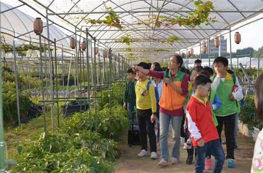 深圳农家乐旅游推荐乐湖生态园行程攻略