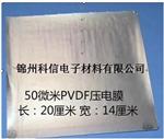 上海PVDF壓電膜