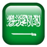 沙特EER