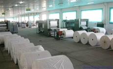 供应优质棉纸/ 白棉纸/食品棉纸厂家