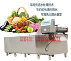 YQX-650A蔬菜清洗机