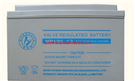 卡能尔12V系列蓄电池