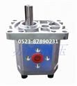 泰兴齿轮泵,CBN-F300系列中压齿轮泵