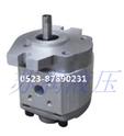 江苏齿轮泵CBW-F200升降机专用齿轮泵