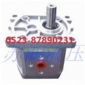 油压机齿轮泵CBW-F300高压齿轮泵