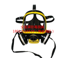 全面罩過濾式防毒面具
