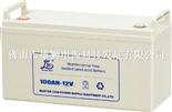 雄狮100AH-12V(大壳)电池