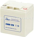 云腾24AH-12V电池