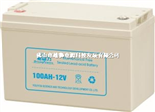 驱动力100AH-12(小壳)电池