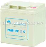 电力士24AH-12V电池