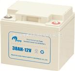 电力士38AH-12电池