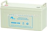 电力士100AH-12(大款)电池