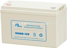 电力士100AH-12V(小款)电池