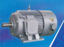 全国厂价直销华晟YVF(Y2VF)系列变频调速三相电动机_华晟电动机图片