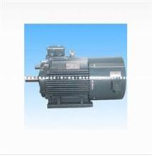 东莞电机丨YVF(Y2VF)系列变频调速三相异步电动机