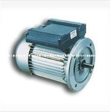 天洋电机,佛山天洋电机东莞总代理,YL型单相双值电容异步电动机