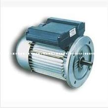YU电阻起步运转异步电动机,广东天洋电机