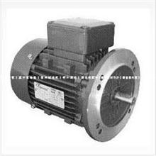 东莞天洋电机,ES三相异步电动机