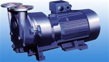2BY系列液环式真空泵