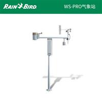 美国雨鸟WS-PRO气象站