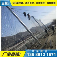 RXI-025环形被动网、RXI-025被动网安装报价