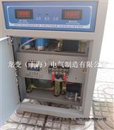 DJW-10KVA精密净化交流稳压电源
