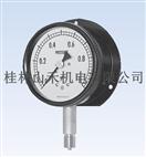 日本长野计器(NKS)BS12、BS17系列压力计