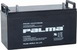 PM120-12  12V120AH