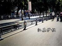 天门市花式道路护栏