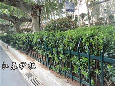淄博市草坪护栏