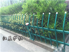 泰安市绿化带护栏