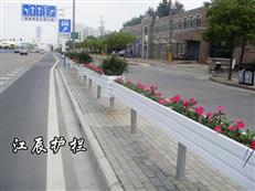 安庆市道路花箱