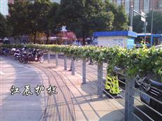 金华市PVC花箱护栏