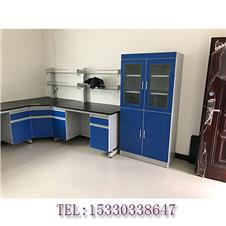 重庆实验室家具 气瓶柜 样品柜