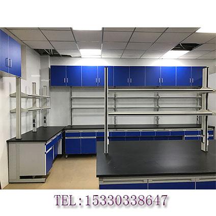 重庆实验室家具 重庆全木吊柜
