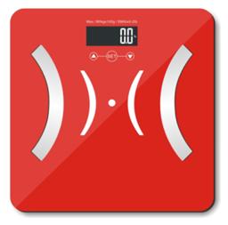 脂肪秤 體重秤-1355