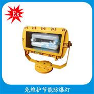 HBD1109  免维护节能防爆灯