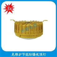 HBD1107-YQL40  免维护节能防爆吸→顶灯