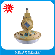 HBD1106-YQL65  防爆灯