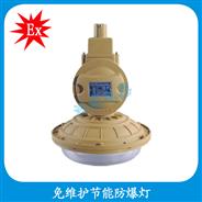HBD1103-YQL50  防爆灯