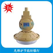 HBD1102-YQL40  防爆灯