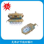 HBD1101-YQL50  免维护�e节能防爆灯