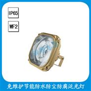 FGW6130-YQL  免维护节能防水防尘防腐泛光灯