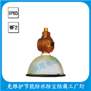 FGK6112-YQL65  免维护节能防水防尘防腐工厂灯