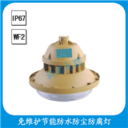 FGW6102-YQL40  免维护节能防水防尘防腐灯