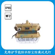 FGW/SBF6101-YQL50  免维护节能防水防尘防腐泛光灯