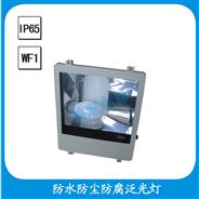 FGW302 防水防尘防腐泛光灯