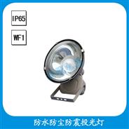 FGT701-W 防水防尘防震投光灯