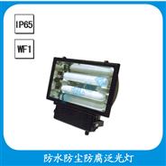 FGW300 防水防尘防腐泛光灯